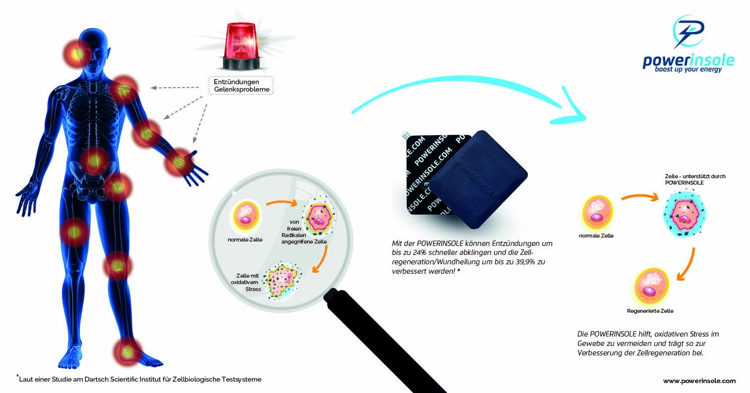 Zellregeneration, Studie, Powerinsole, Dartsch